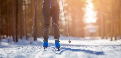 Plakat Cross country skiing Banner, winter sport on snowy track, sunset background