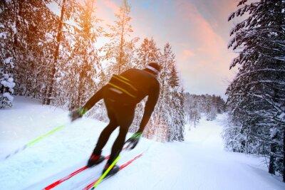 Plakat Cross-country skiing in Sweden