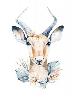 Plakat Cute antelope watercolor portrait savanna illustration. African wildlife animal