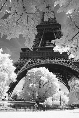 Czarno- białe zdjęcie Eiffel