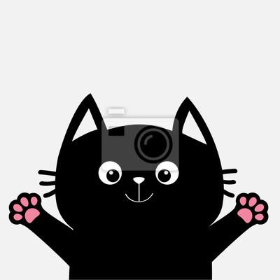 Czarny Kot Gotowy Do Przytulania Otwarty Druku łapy Ręcznie Plakaty Redro
