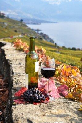Plakat czerwone wino z winnic taras w regionie Lavaux, Szwajcaria