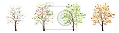 Plakat Cztery pory roku drzewa wektor