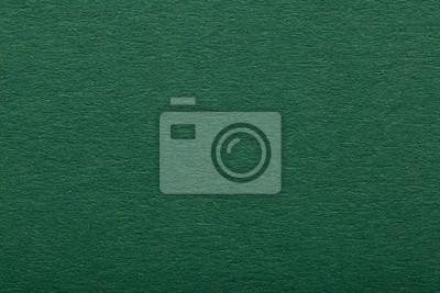 Plakat Dark green paper texture