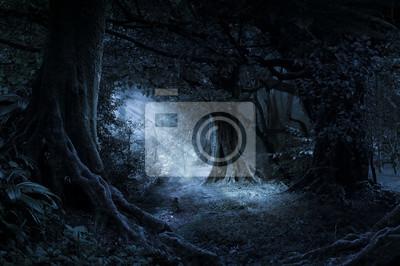 Plakat Deep tropical jungle in darkness
