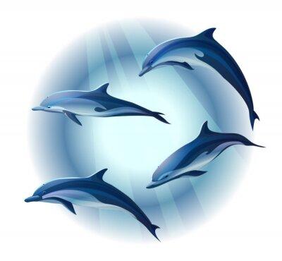Plakat delfiny