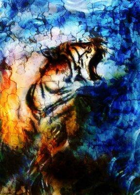 Plakat delikatne tygrysa portret. kolaż komputerowy. Streszczenie kolor tła. Koncepcja Zwierząt.