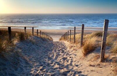 Plakat Droga do plaży Morza Północnego w złotym słońcu