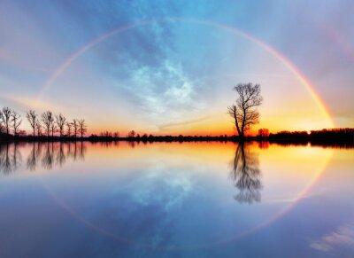 Plakat Drzewa i słońce na wschód słońca nad jeziorem