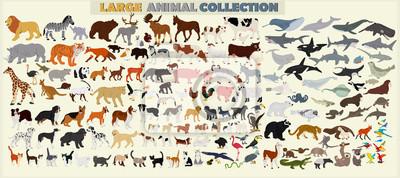 Plakat Duży zestaw zwierząt świata na jasnym tle.
