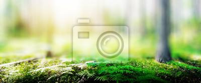 Plakat Ecology background