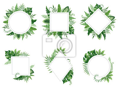 Plakat Egzotyczna rama liścia. Wiosna pozostawia karty, tropikalne drzewa ramki i vintage kwiatowy dżungli granicy na białym tle wektor zestaw