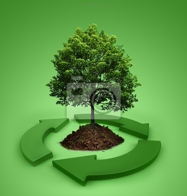 Plakat ekologia