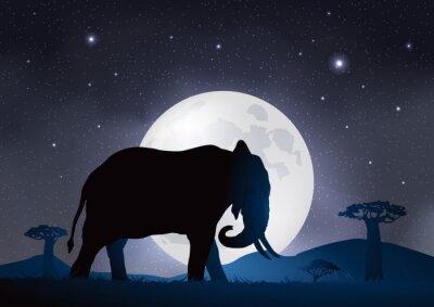 Plakat Elefant-Clair de Lune