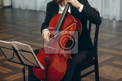Plakat Elegant string quartet performing at wedding reception in restaurant, handsome man in suits playing violin and cello at theatre play orchestra close-up, music concept