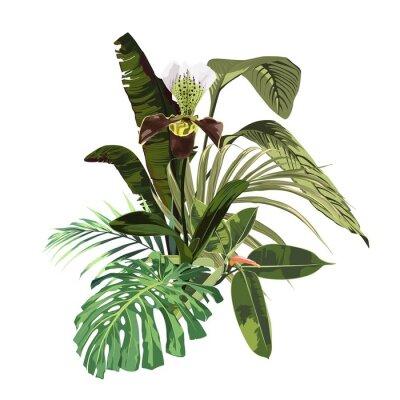 Plakat Element projektu tropikalny zaproszenie z kwiatów orchidei i egzotycznych liści palmowych na białym tle.