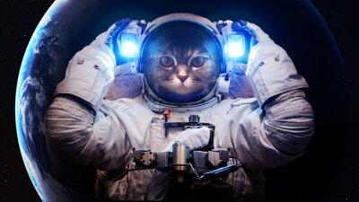 Plakat Elementy tego zdjęcia dostarczone przez NASA