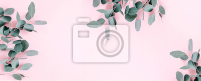 Plakat Eucalyptus leaves and branches on pastel pink background. Eucalyptus branches pattern. Flat lay, top view, copy space, banner