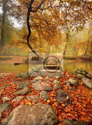 Plakat Fall Creek