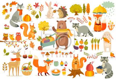 Plakat FAll zestaw tematów, las Zwierzęta ręcznie rysowane styl.