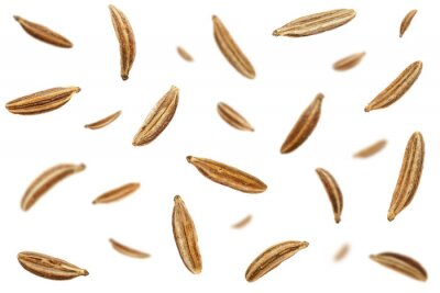 Plakat Falling caraway seeds isolated on a white background, top view. Cumin seeds in the air on a white background. Set of cumin seeds in the air. Caraway grains isolated on white background.