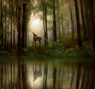 Plakat Fantasy płowe w dzikim lesie