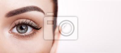 Plakat Female Eye with Extreme Long False Eyelashes. Eyelash Extensions. Makeup, Cosmetics, Beauty. Close up, Macro