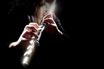 Plakat Flecista instrument muzyczny gra na flecie