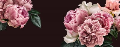 Plakat Floral banner, flower cover or header with vintage bouquets. Pink peonies, white roses isolated on black background.
