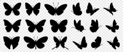 Plakat Flying butterflies silhouette black set isolated on transparent background