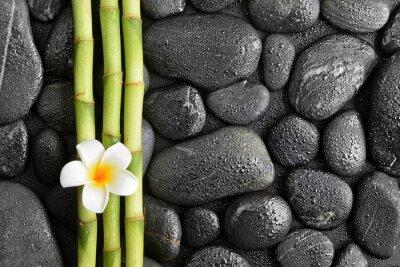 frangipani kwiat i bambusa na czarnych kamieni