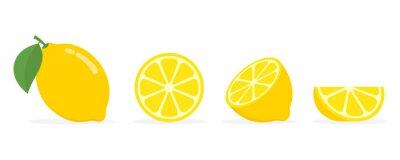 Plakat Fresh lemon fruits, collection of vector illustrations