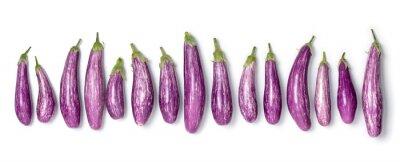 Plakat Fresh raw organic purple mini eggplants in a row isolated on white background