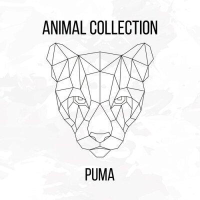 Geometryczne Głowy Puma Plakaty Redro