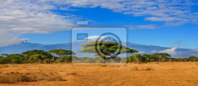 Plakat Góra Kilimandżaro Tanzania śniegu ograniczone pod mętne błękitne niebo zdobył whist na safari w Afryce Kenii.