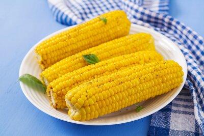Gotowana kukurudza w bielu talerzu na błękitnym tle. Letnie jedzenie.