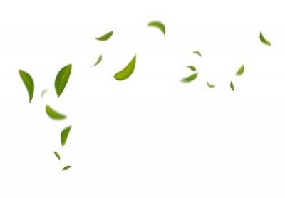 Plakat Green Floating Leaves Flying Leaves Green Leaf Dancing,  Air Purifier Atmosphere Simple Main Picture