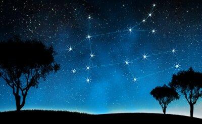 Plakat Gwiazdozbiór Bliźnięta