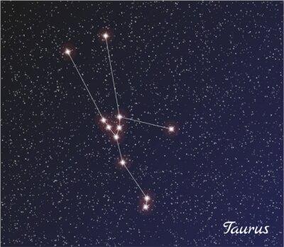 Plakat gwiazdozbiorze Byka