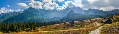 Plakat Hali Gąsienicowej w Tatrach - panorama