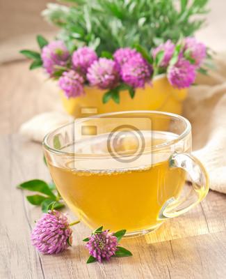 herbata ziołowa koniczyna