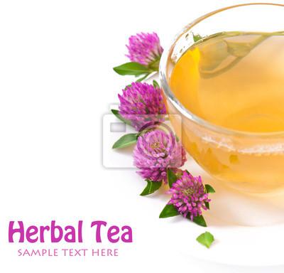 Herbata ziołowa liść koniczyny na białym