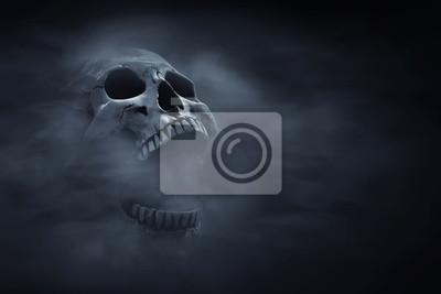 Plakat Human skull on dark background
