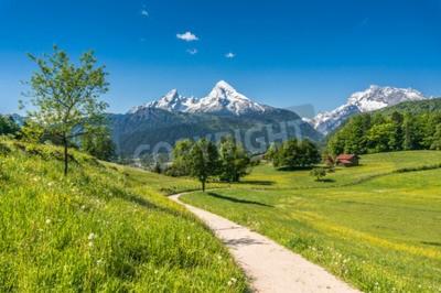 Plakat Idylliczny krajobraz lato w Alpach ze świeżych zielonych górskich pastwiskach i szczytach pokrytych śniegiem w tle, Nationalpark Berchtesgadener, Bawaria, Niemcy