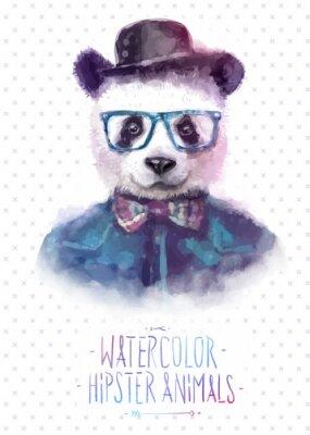 Plakat Ilustracji wektorowych z panda portret w okularach i swetrze