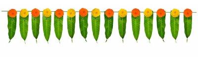 Plakat Indian flower garland of mango leaves and marigold flowers. Ugadi diwali ganesha festival poojas weddings functions holiday ornate decoration. Isolated on white background natural mango leaf garland