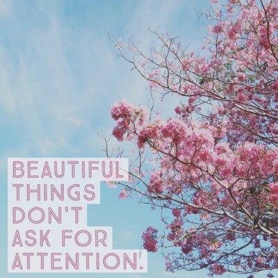 """Plakat Inspirujący motywacyjny cytat """"piękne rzeczy nie zwraca uwagi"""" na różowy kwiat z błękitnym niebem."""