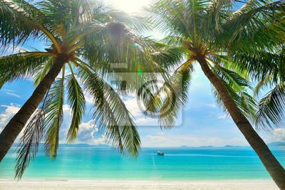 Plakat Island Paradise - Palmy wiszące nad piaszczystej białej plaży