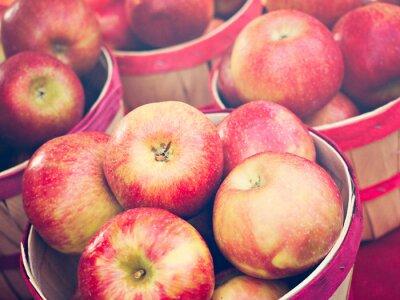 Plakat Jabłka