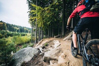 Plakat Jazda na rowerze górskim rowerzysta w lesie jesienią